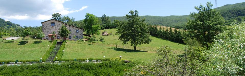 fattoria-main